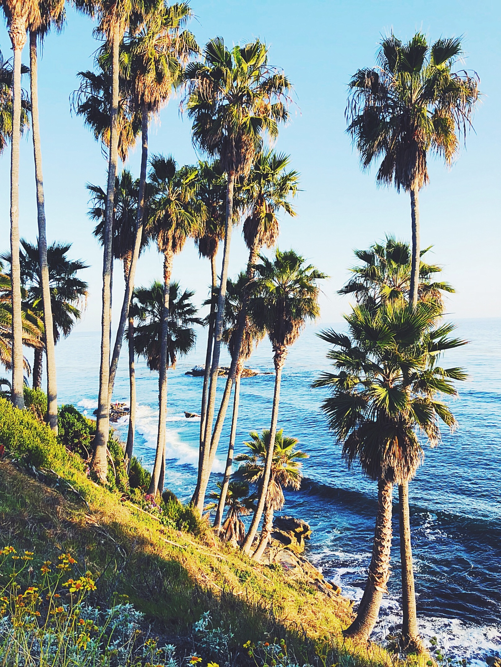 summer southern california socal leigh ann countries and cultures