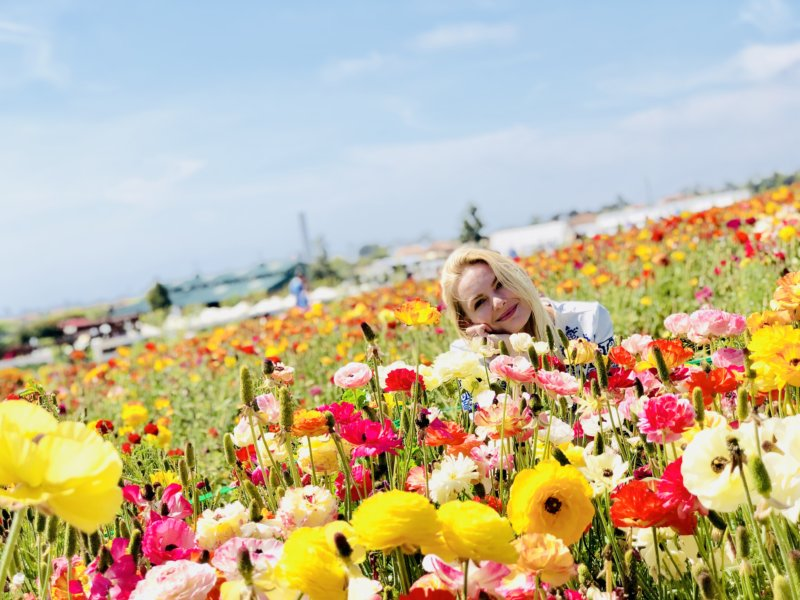 The Flower Fields at Carlsbad